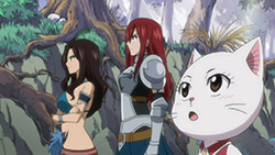 FAIRY TAIL   135   34