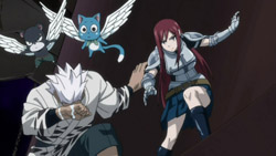 FAIRY TAIL   146   29