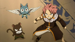 FAIRY TAIL   147   12