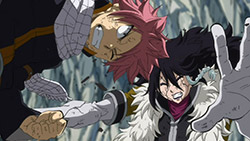 FAIRY TAIL   150   22