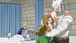 FAIRY TAIL   175   40