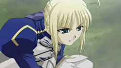 Fate stay night   15   25