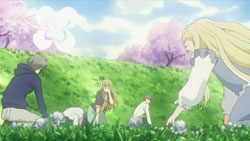 Honey and Clover II   12   46