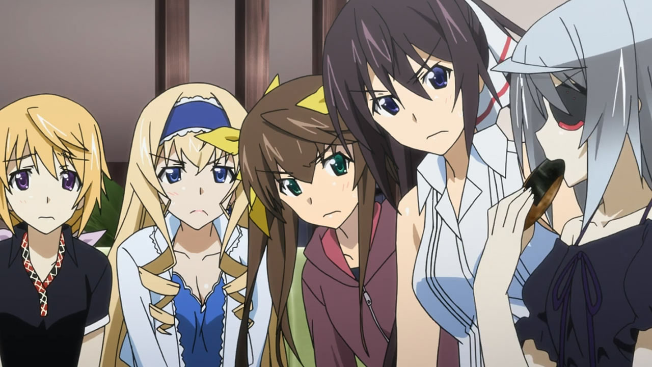 Infinite stratos wedding