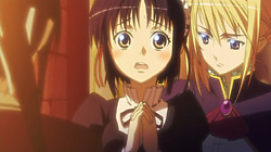 Princess Lover!   10   20