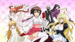 SEKIREI Pure Engagement   00   30