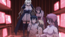 SEKIREI Pure Engagement   10   40