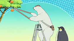 Shirokuma Cafe   04   23