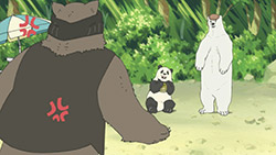 Shirokuma Cafe   08   31
