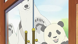 Shirokuma Cafe   09   34