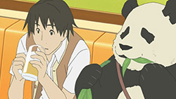 Shirokuma Cafe   10   28