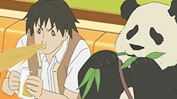 Shirokuma Cafe   10   30
