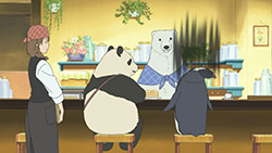 Shirokuma Cafe   11   13