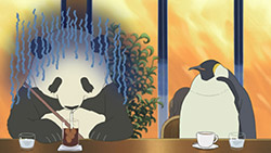 Shirokuma Cafe   18   21