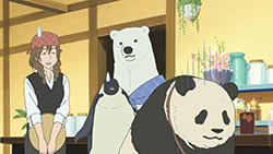 Shirokuma Cafe   18   27