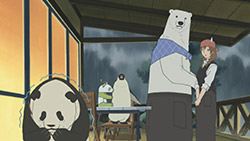 Shirokuma Cafe   18   32