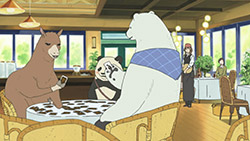 Shirokuma Cafe   22   21