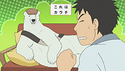 Shirokuma Cafe   23   14