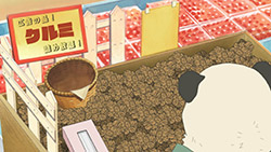 Shirokuma Cafe   23   19