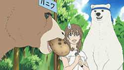 Shirokuma Cafe   24   31