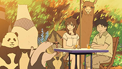 Shirokuma Cafe   24   36