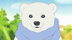 Shirokuma Cafe   25   22