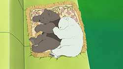 Shirokuma Cafe   25   34