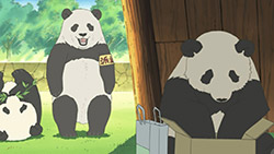 Shirokuma Cafe   26   12