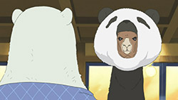 Shirokuma Cafe   26   20